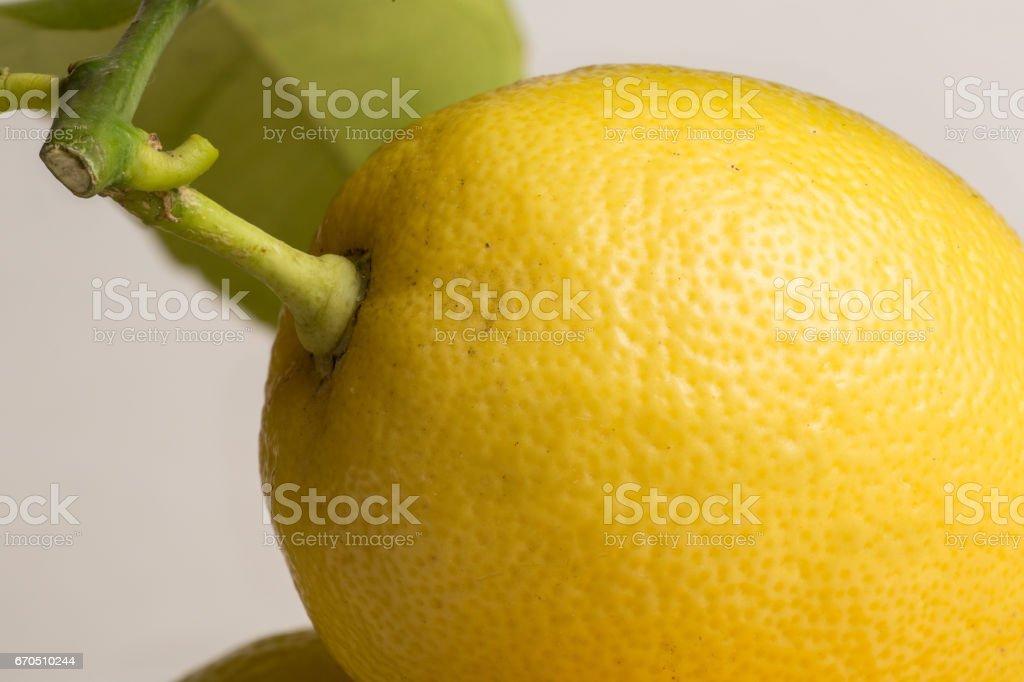 Lemon, stem end with leaf, close up stock photo