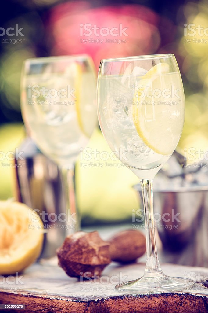 Lemon Vodka Cocktail as Fresh Summer Drink royalty-free stock photo