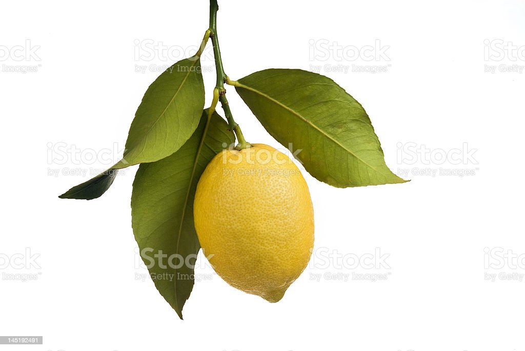 Lemon with leaves isolated royalty-free stock photo