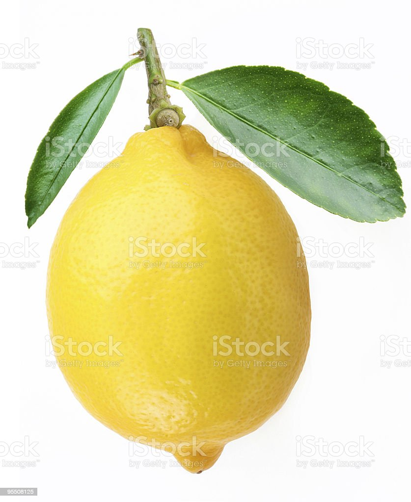Lemon with leaves on a white background stock photo