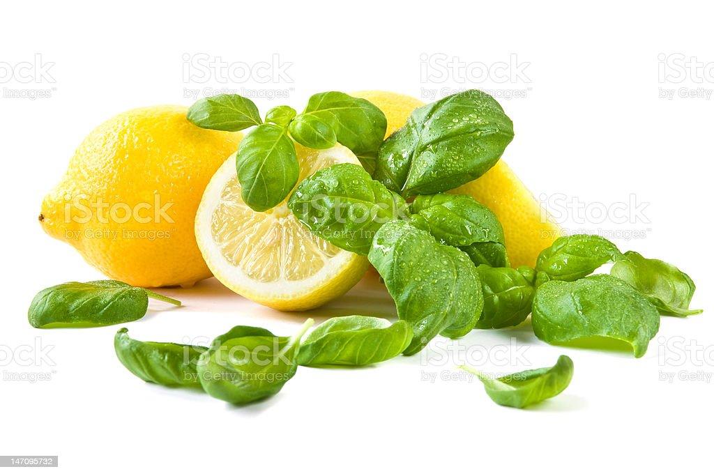 Lemons and basil stock photo