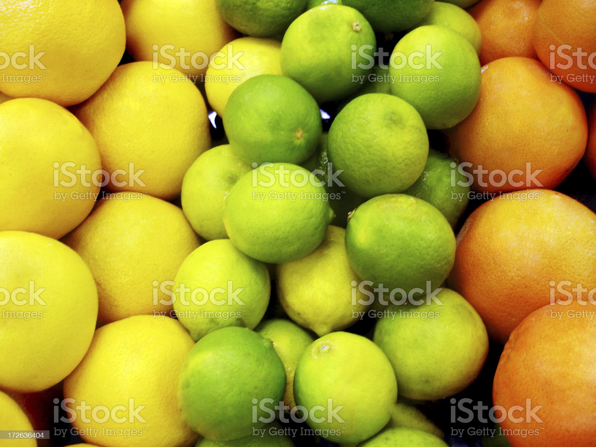 Lemons and Oranges royalty-free stock photo