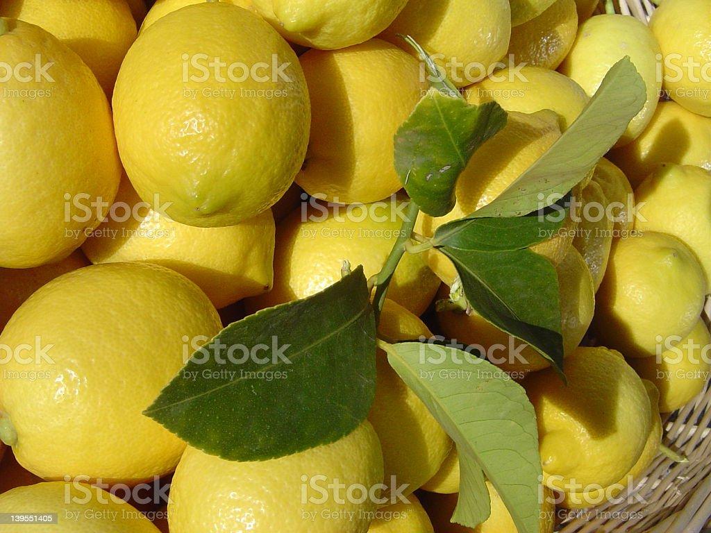 Lemons I stock photo