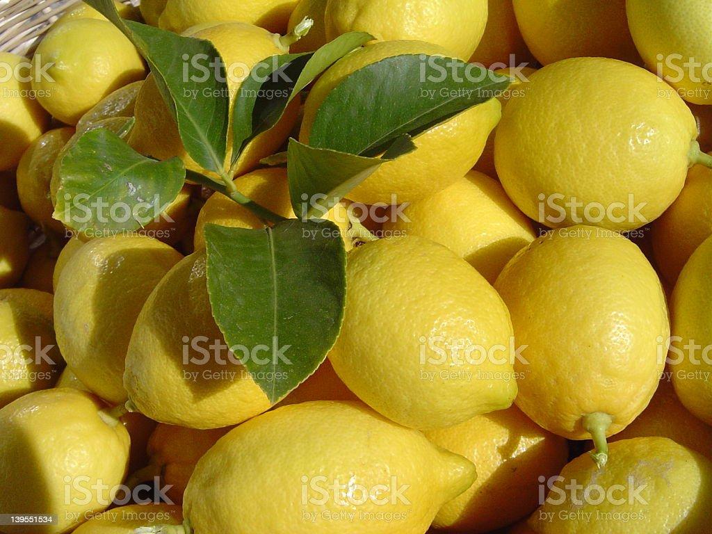 Lemons III stock photo
