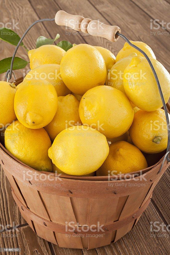 Lemons in a Bucket royalty-free stock photo