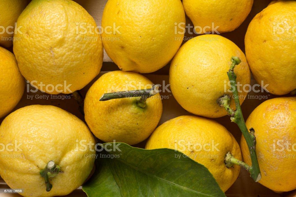 Lemons, stem end, close up stock photo