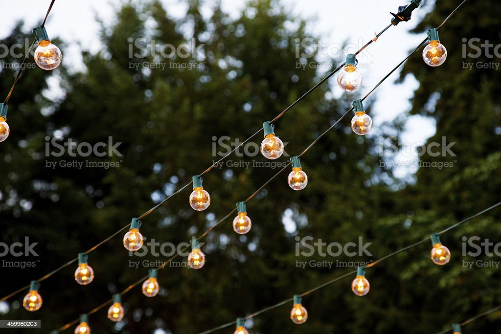 Lengths of hanging lights strung between trees royalty-free stock photo