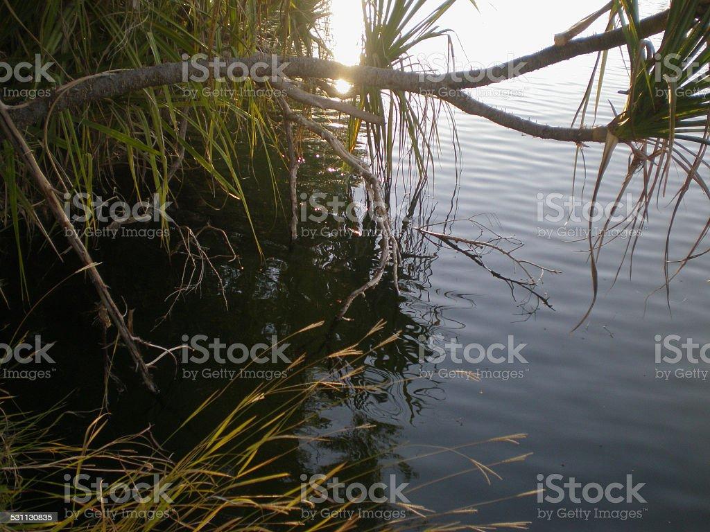Lennard River in Western Australia stock photo