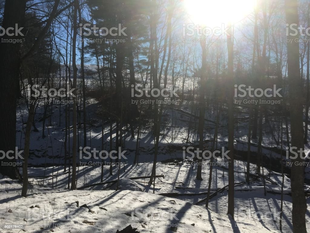 Lens Flare.  Looking at the sun through deciduous trees in the winter.  Snow on the ground, small river runs through the woods.  Snow covered trial Poet's Walk near Red Hook, New York. stock photo
