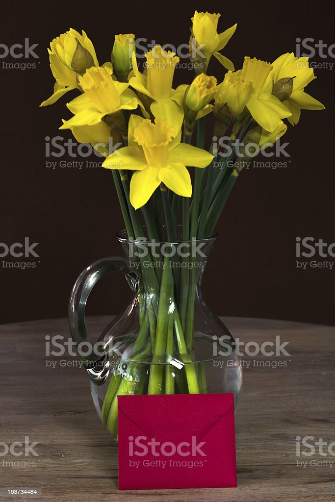 Lent lily daffodil in a glass vase royalty-free stock photo