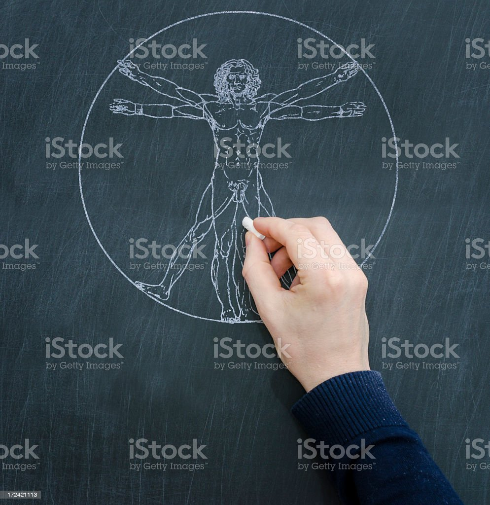Leonardo da Vinci - Homo Vitruvianus stock photo