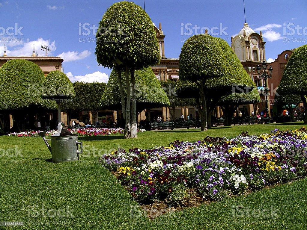 Leon's Zocalo Garden stock photo