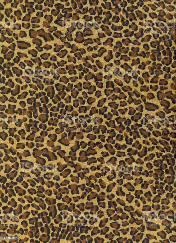 Leopard Background royalty-free stock photo