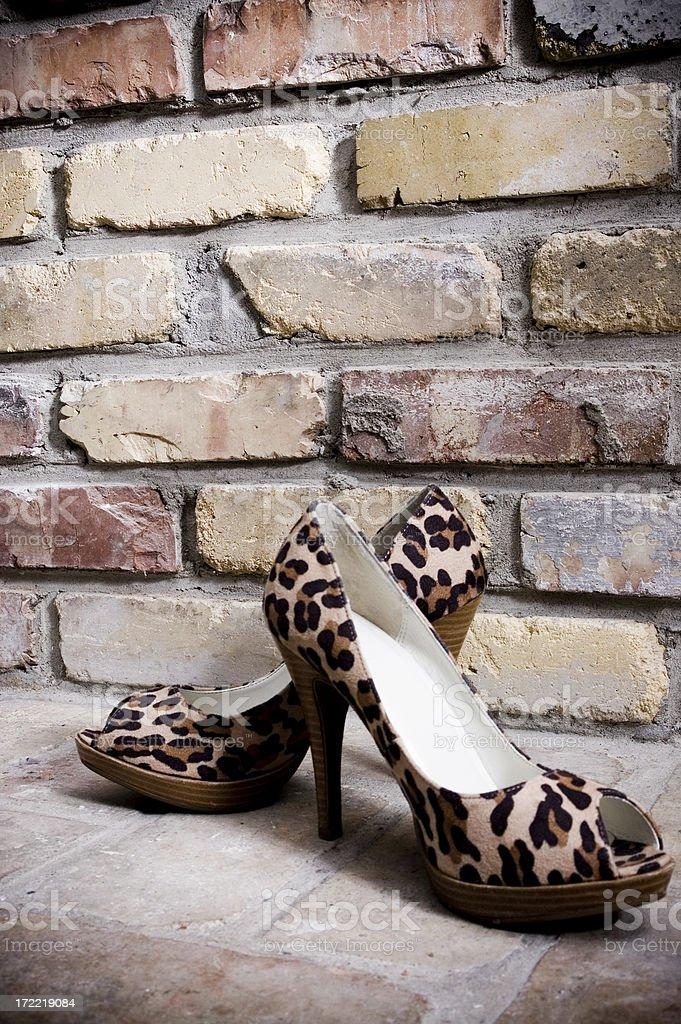Leopard Heels royalty-free stock photo