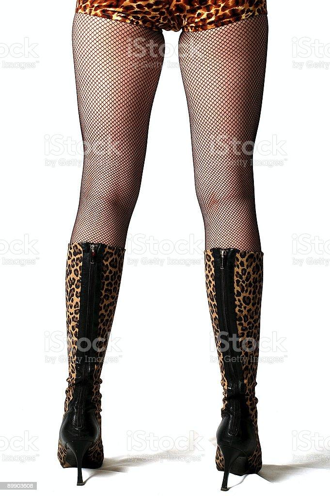 leopard legs royalty-free stock photo