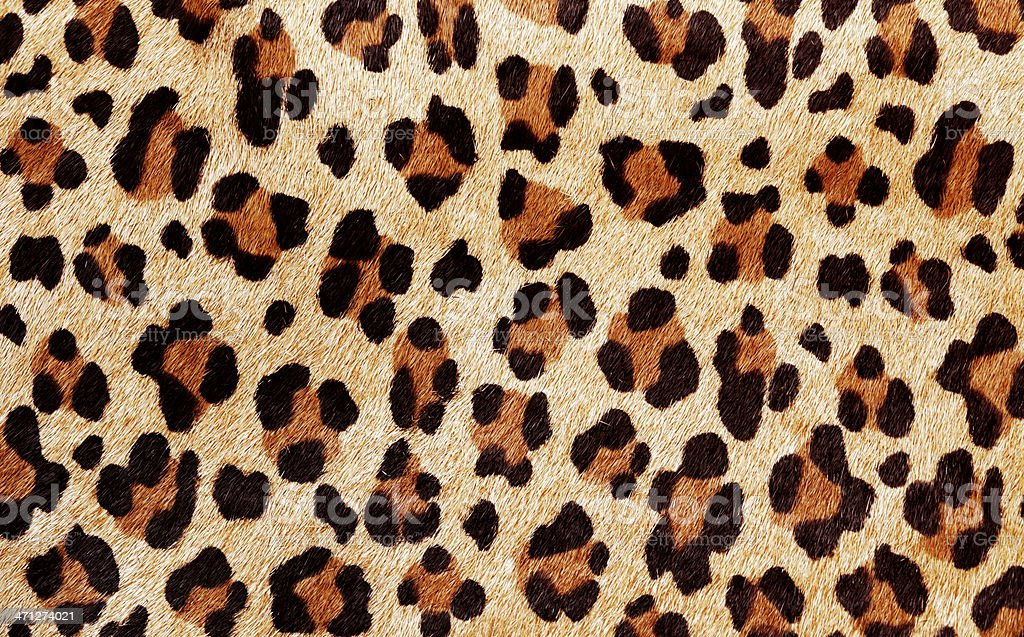 Leopard Print Pattern stock photo