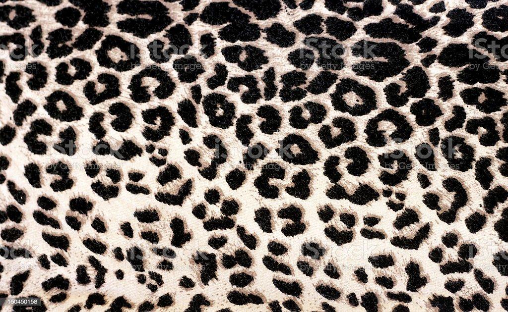 Leopard Print stock photo