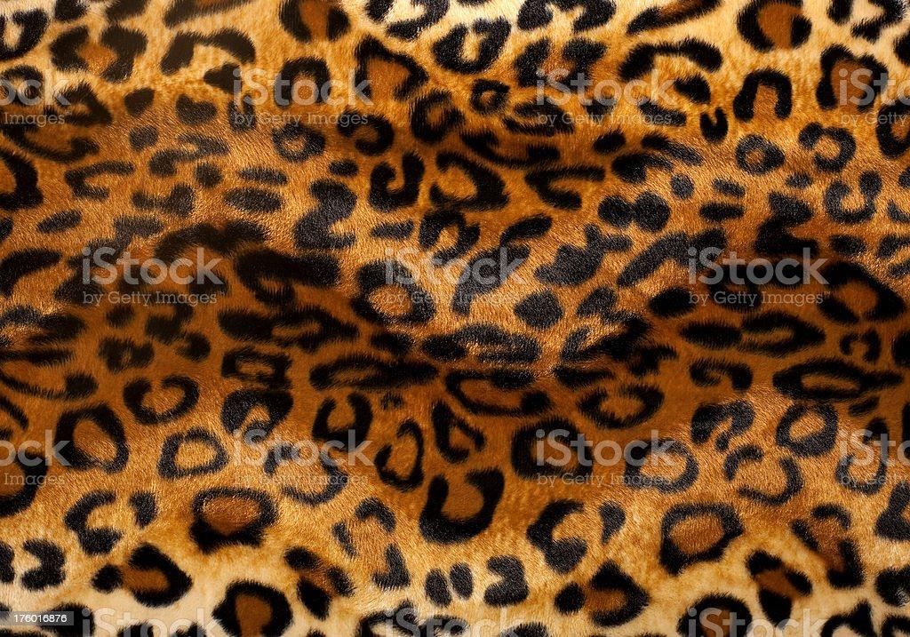 Leopard print royalty-free stock photo