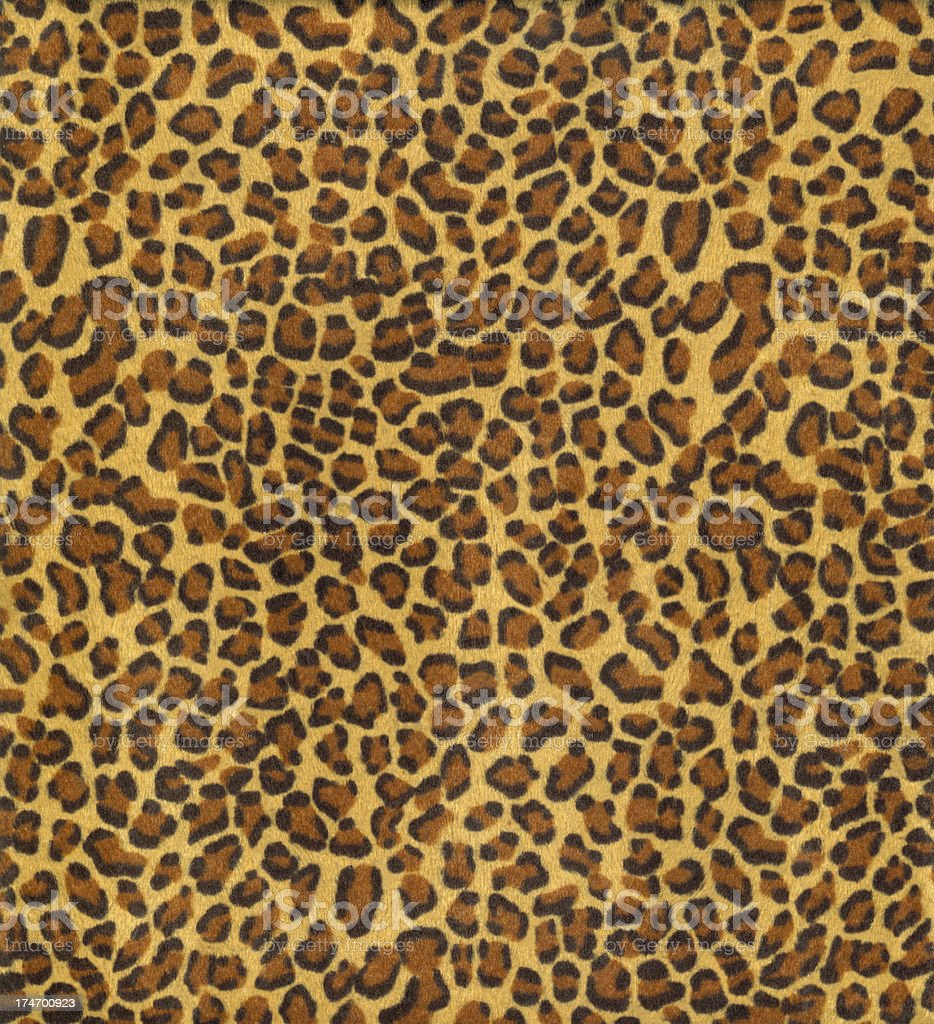 Leopard skin background royalty-free stock photo