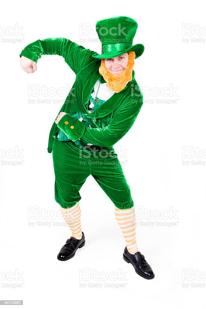 Leprechaun royalty-free stock photo