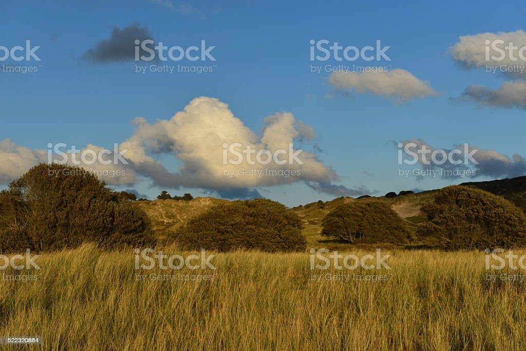 Les Mielles dune, Jersey, U.K. stock photo