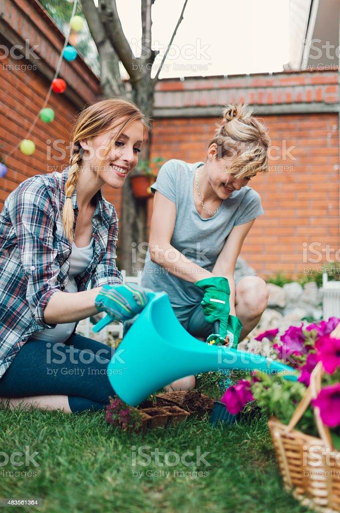 Lesbian Couple Gardening In their Backyard. stock photo