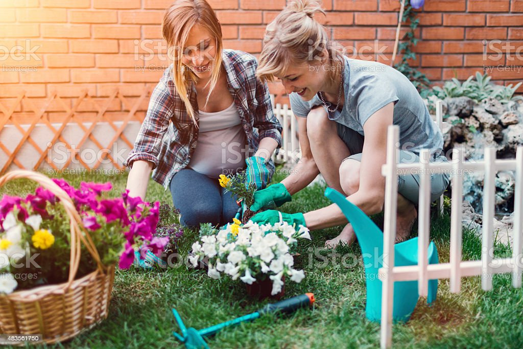 Lesbian Couple Planting Flowers stock photo