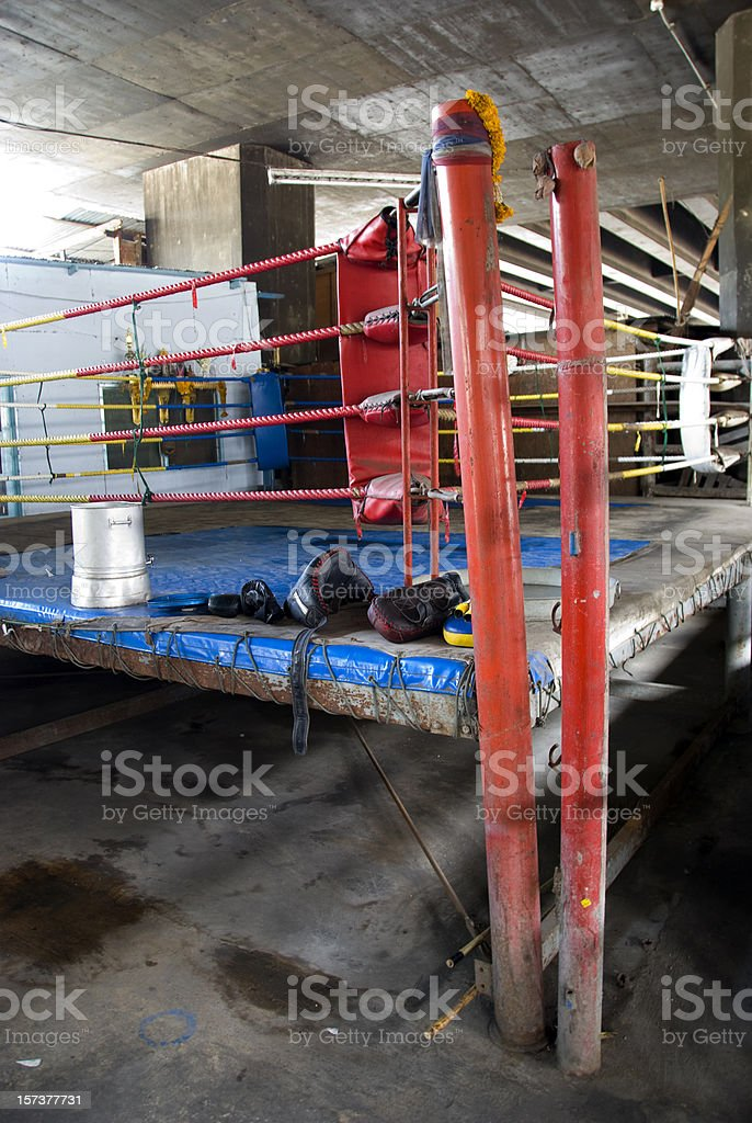 Let the fight begin royalty-free stock photo