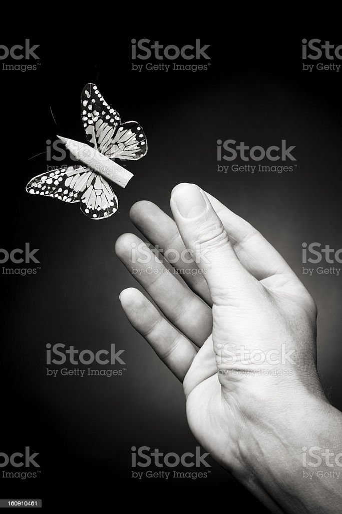 Let your imagination fly. Creativity concept. stock photo