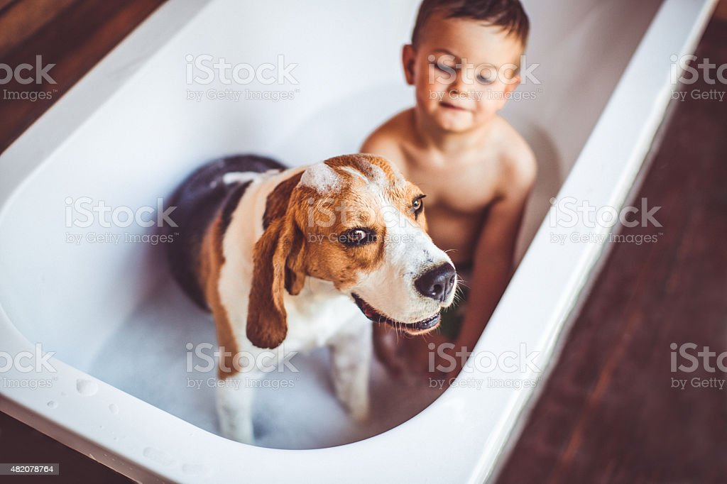 Let's have a bath stock photo