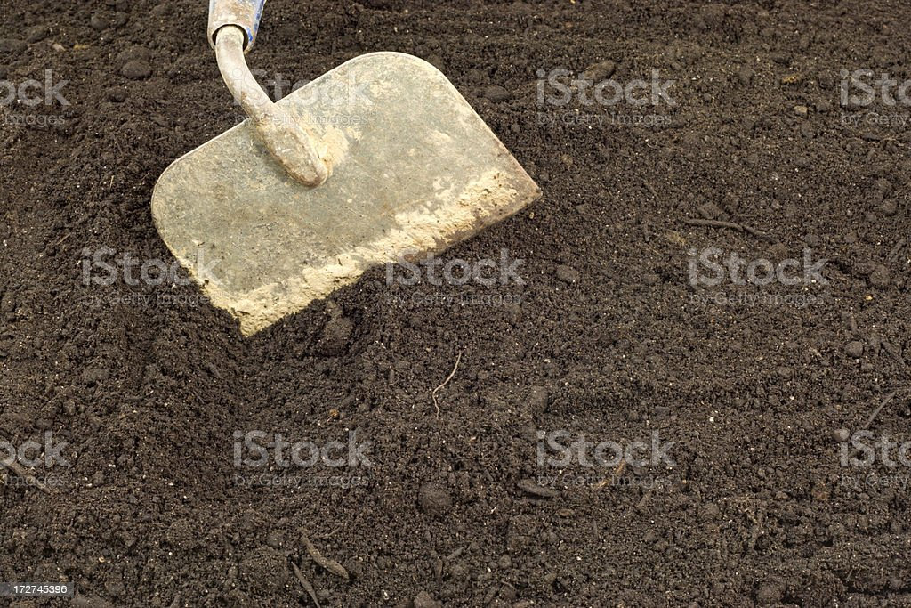 Let's Plant Something! royalty-free stock photo