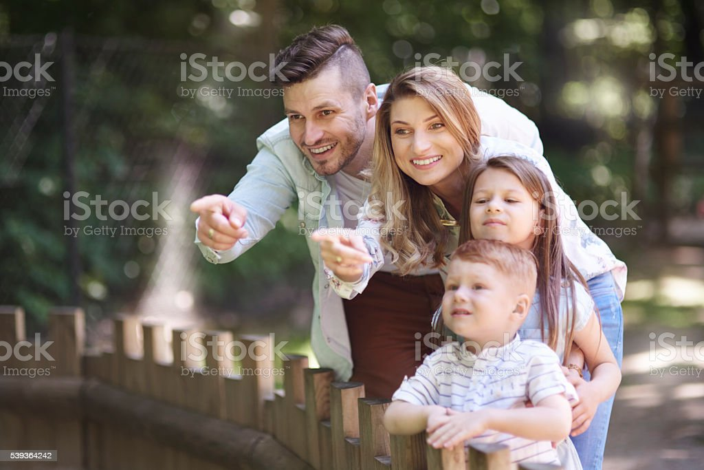 Let's see how cute are little animals stock photo