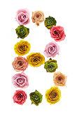 Letter B made of roses