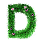 Letter D of Grass And Flowers