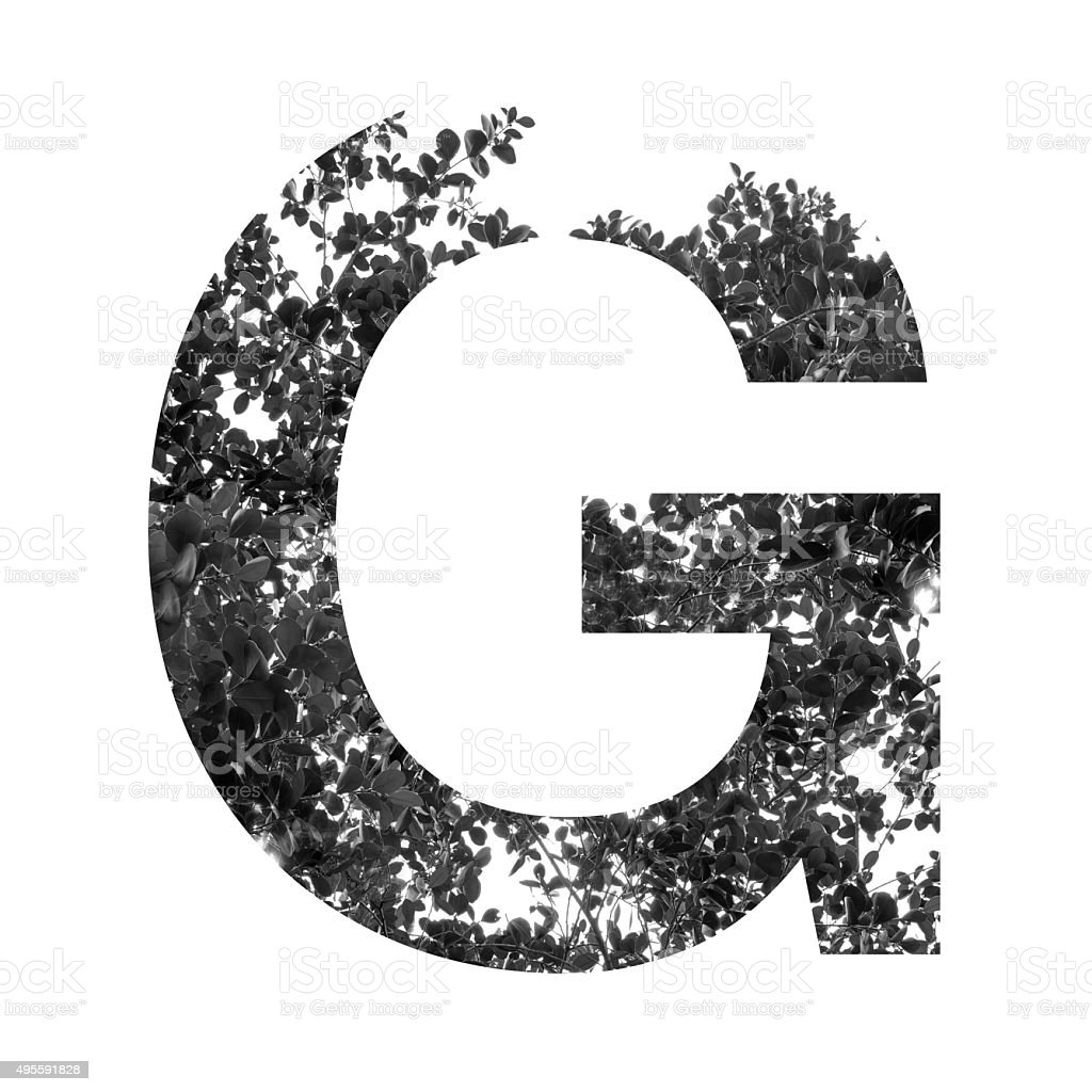 G letter double exposure with black and white leaves stock photo