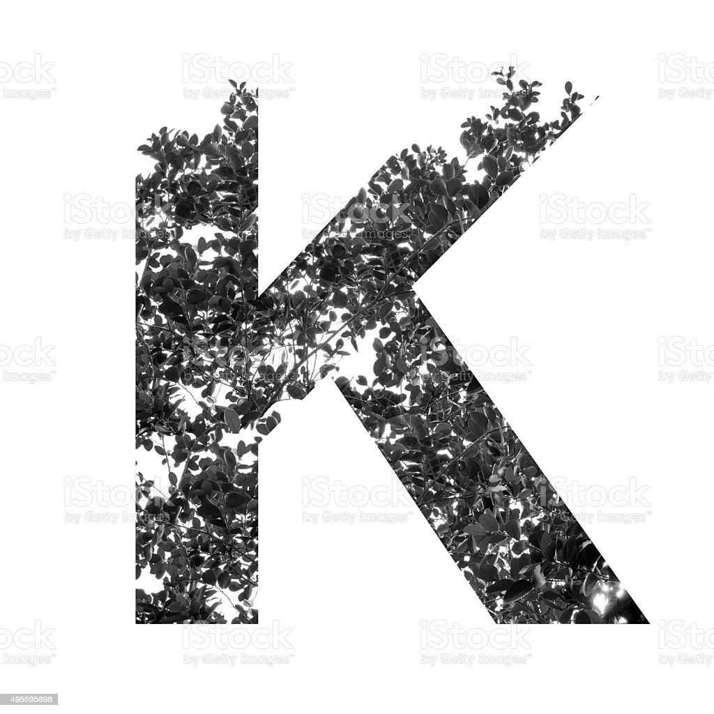 K letter double exposure with black and white leaves stock photo