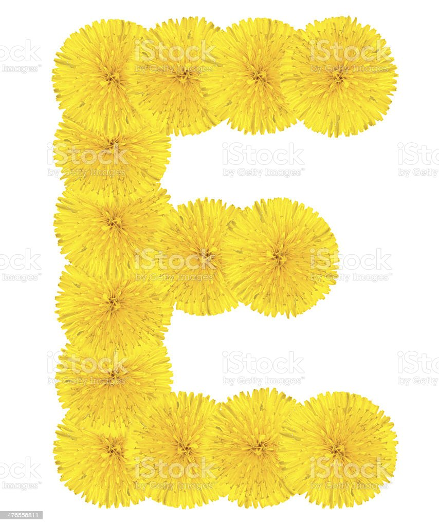 Letter E made from dandelions royalty-free stock photo