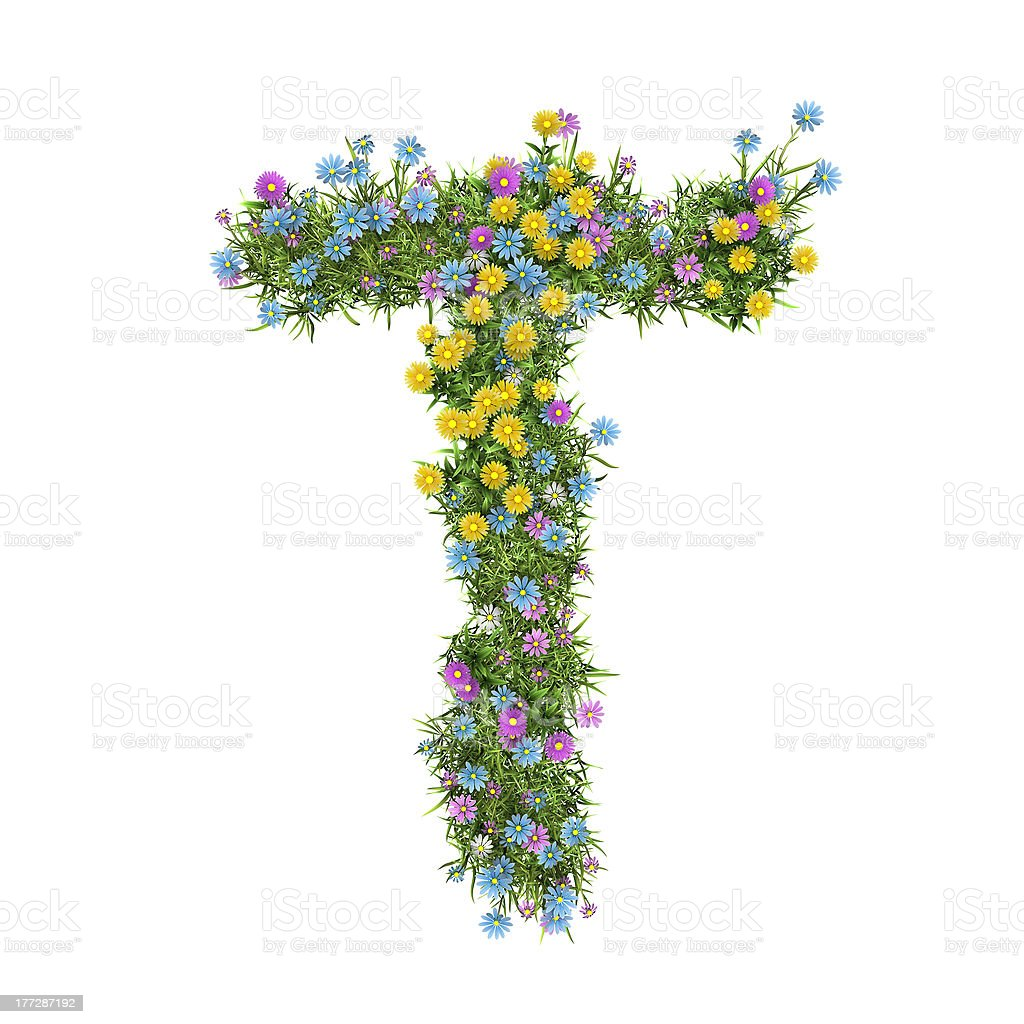Letter Т, flower alphabet isolated on white royalty-free stock photo