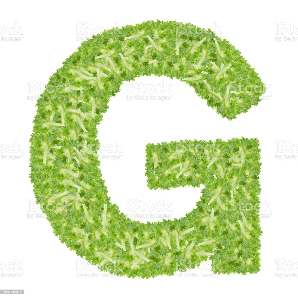 Letter G alphabet with hydroponics leaf  ABC concept type as logo isolated on white background stock photo