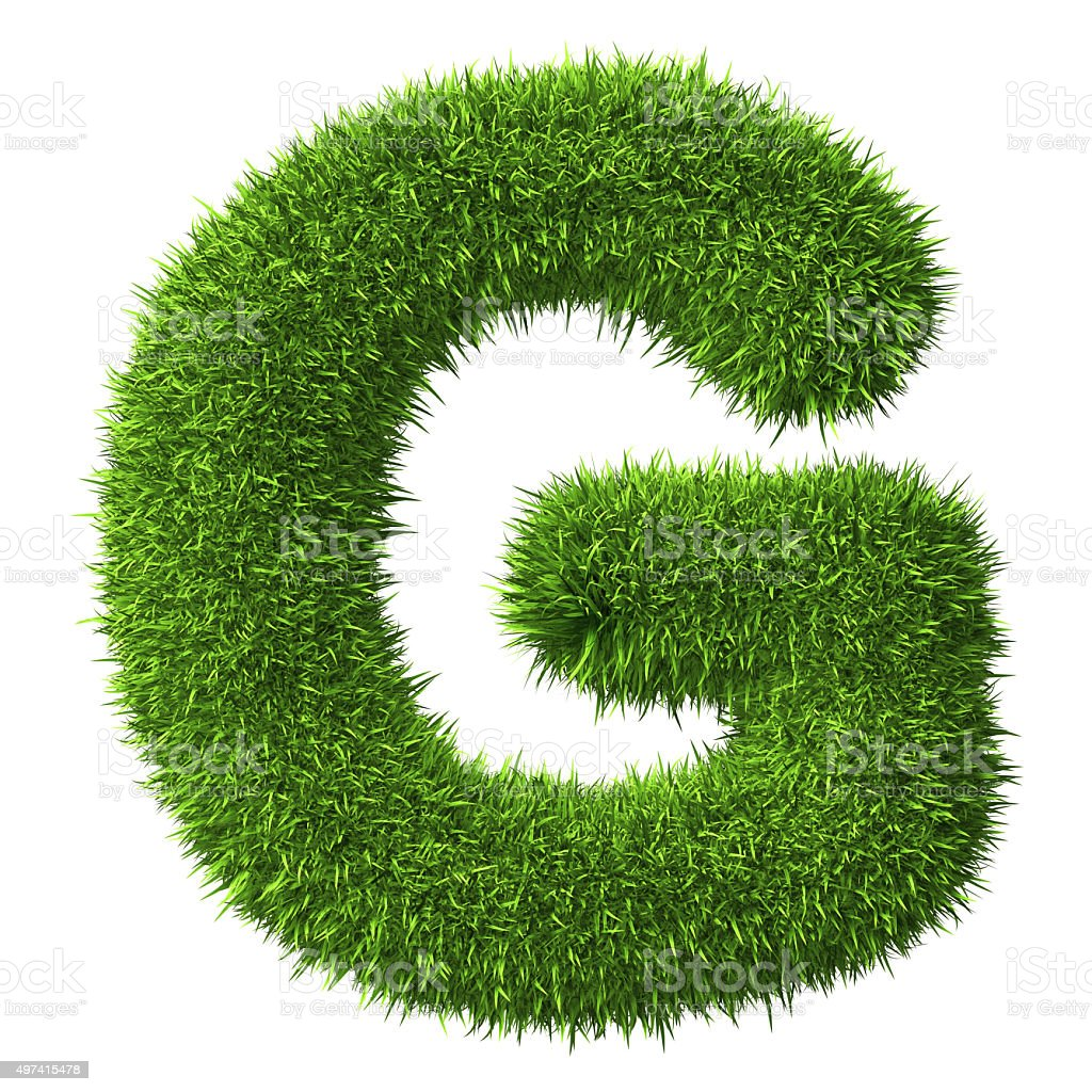 Letter G of grass stock photo