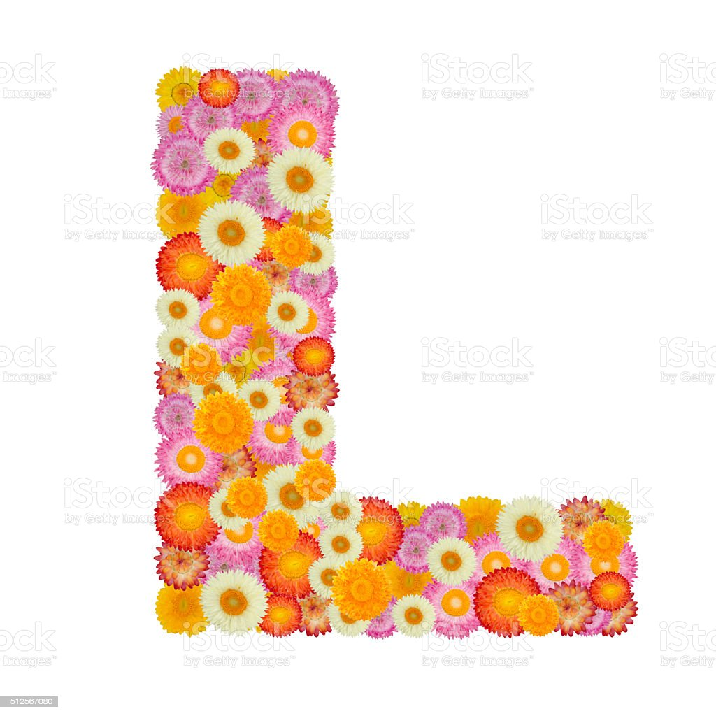 Letter L alphabet with straw flower isolated on white background stock photo