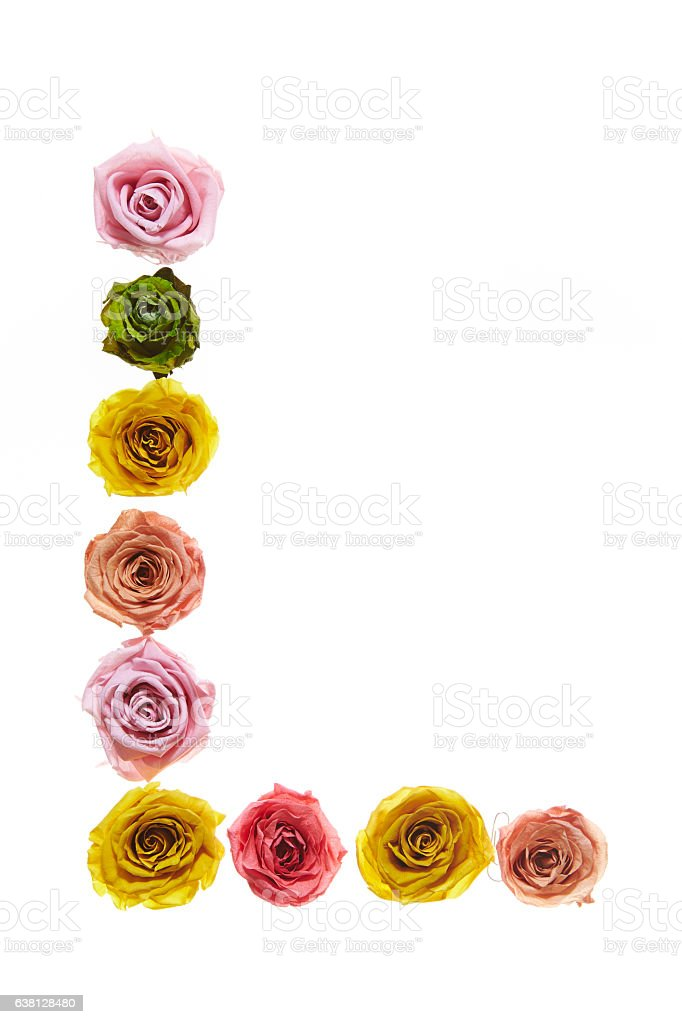 Letter L made of roses stock photo