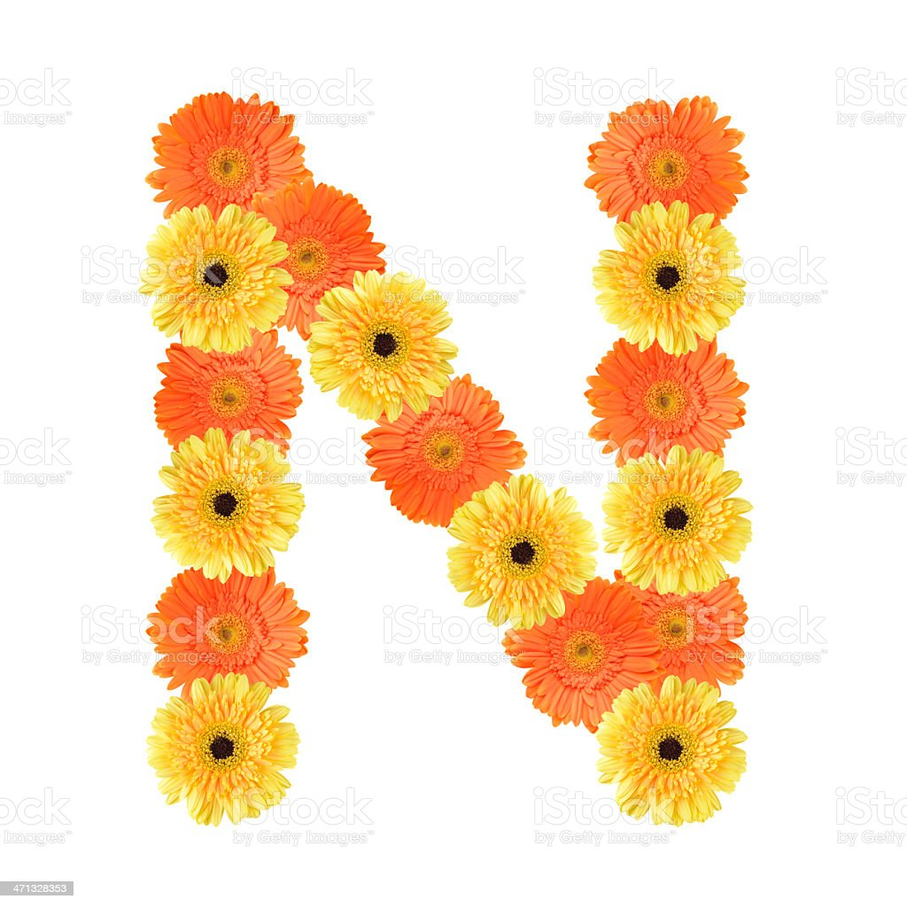Letter N created by flower royalty-free stock photo
