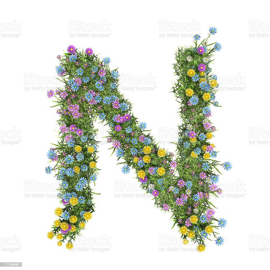 Letter N, flower alphabet isolated on white royalty-free stock photo