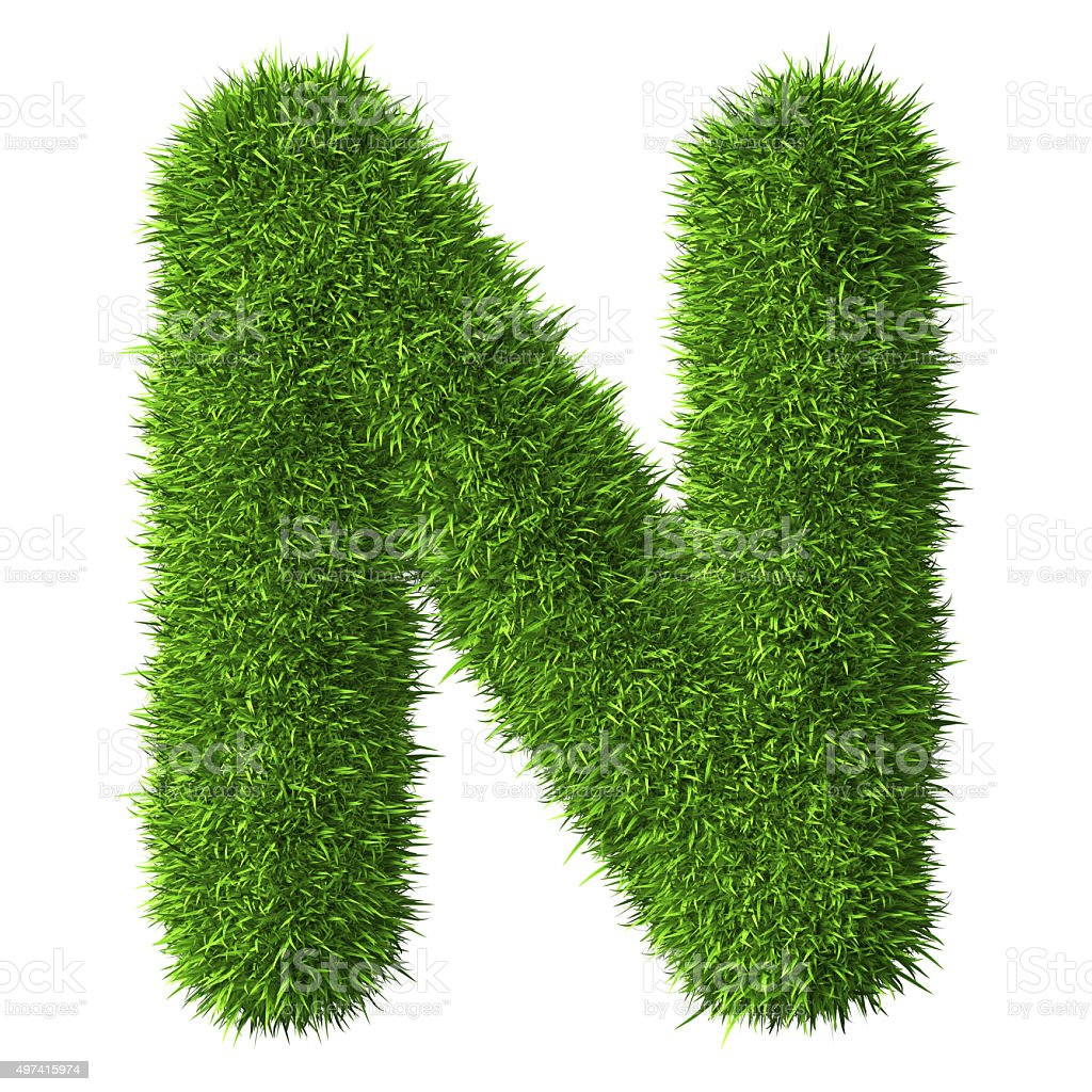 Letter N of grass stock photo