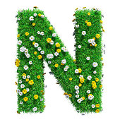 Letter N Of Green Grass And Flowers