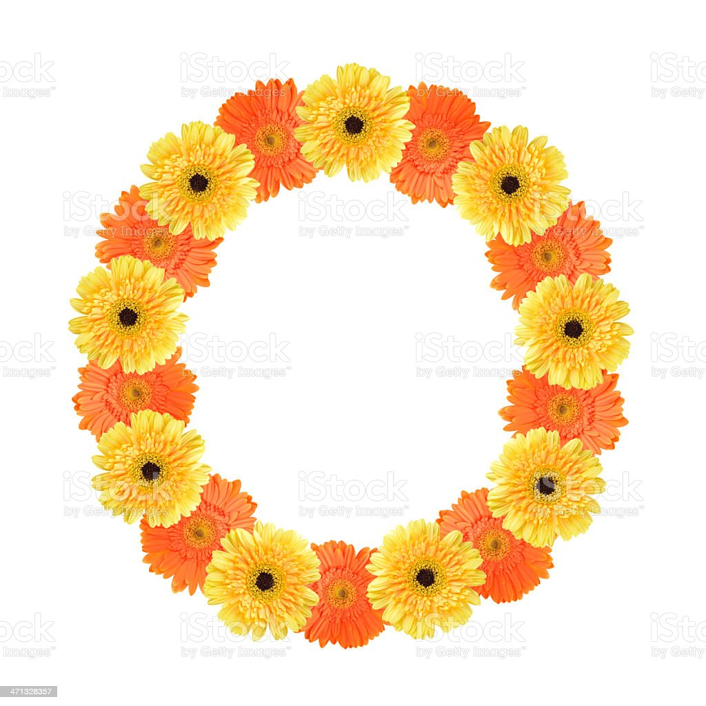 Letter O created by flower royalty-free stock photo