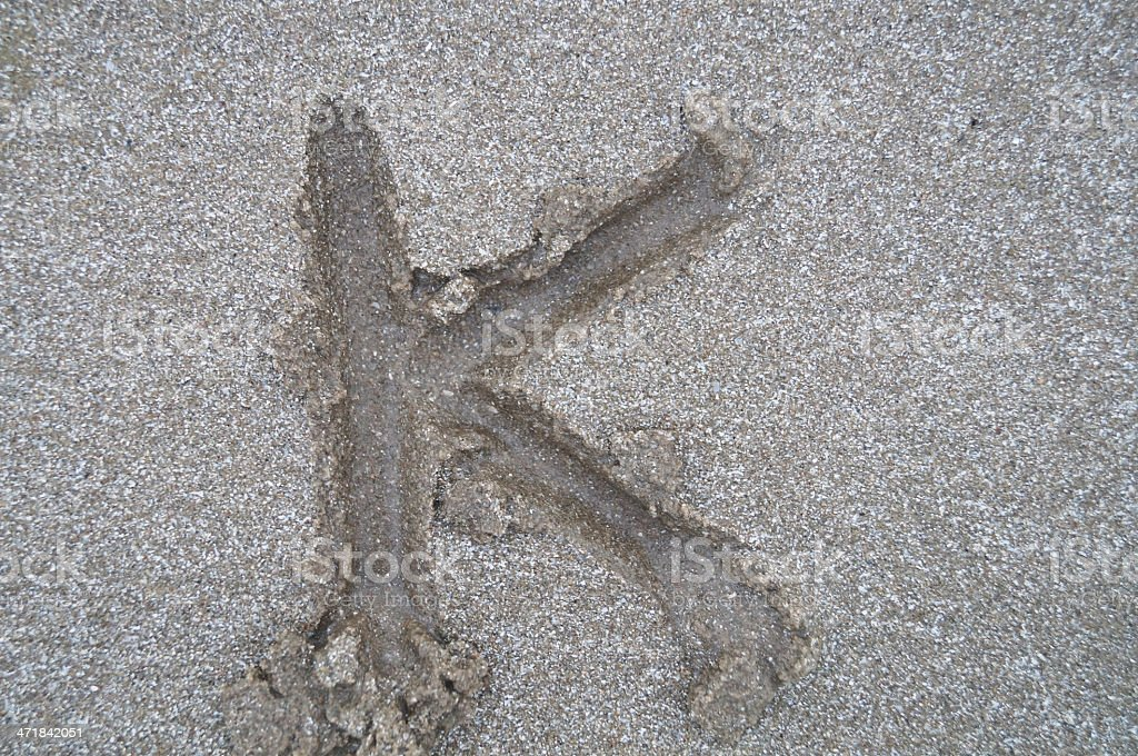 K letter on beach royalty-free stock photo