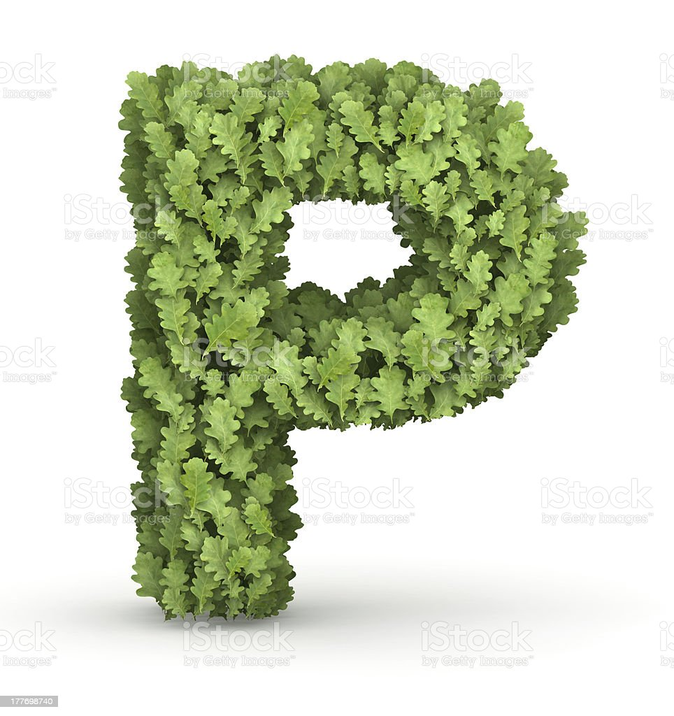 Letter P from green leaves royalty-free stock photo