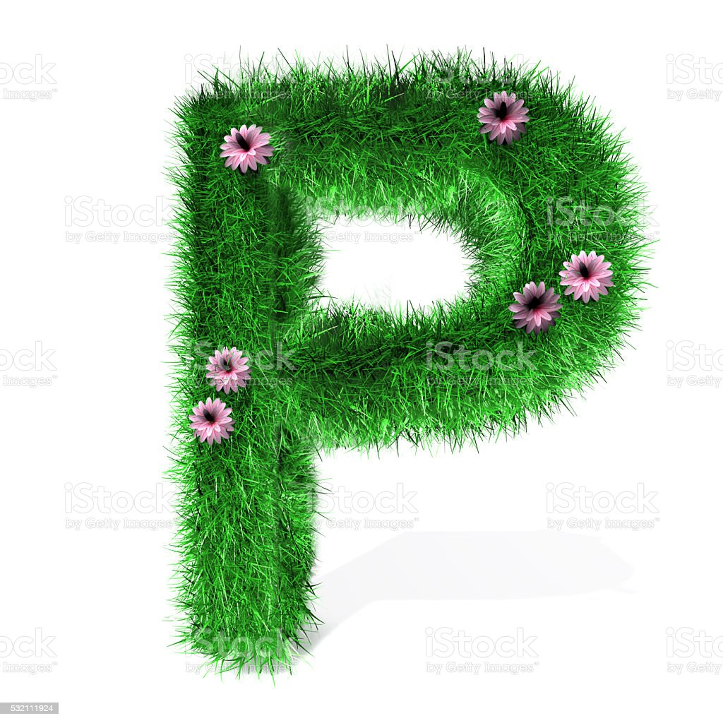 Letter P of Grass And Flowers stock photo